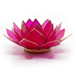 Lotus Atmosphärisches Licht Fuchsia Goldrand