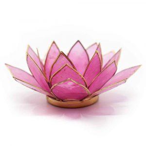 Lotus Atmosphärisches Licht Hell Rosa Goldrand